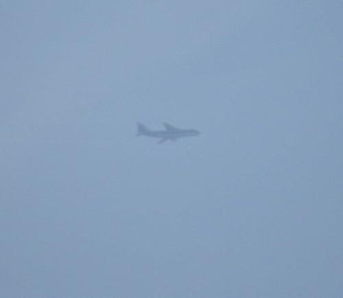 VolgaDneprAirlines10