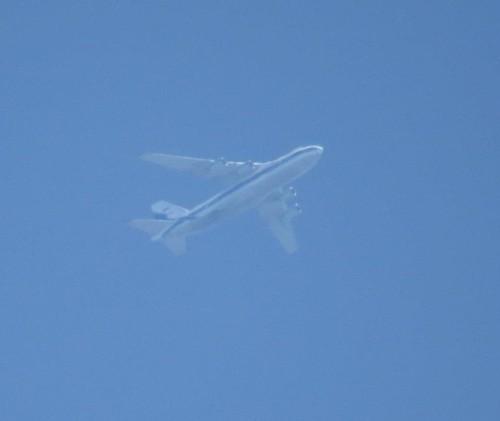 VolgaDneprAirlines16