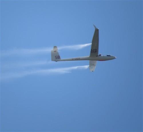 Glider - D-0109-03