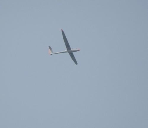 Glider - D-0314-01