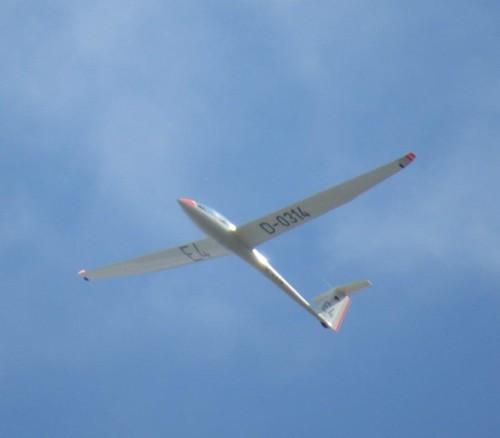 Glider - D-0314-02 (1)