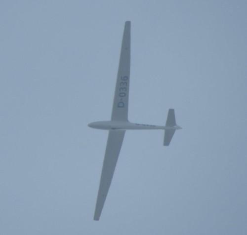 Glider - D-0336-01