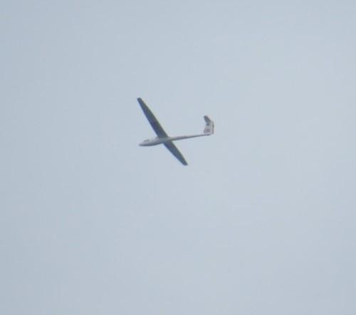 Glider - D-0395-01