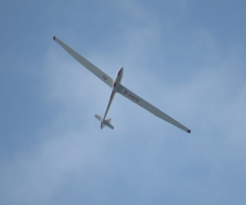 Glider - D-0479-01
