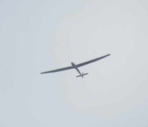 Glider - D-0516-01