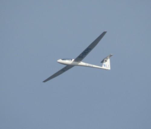 Glider - D-0570-02