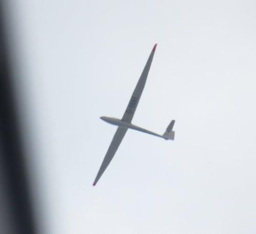 Glider - D-0661-01
