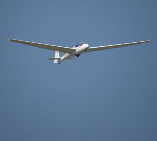 Glider - D-0663-04