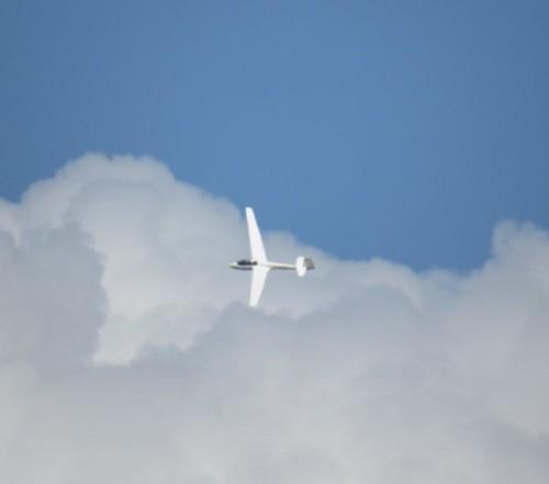 Glider - D-0663-08