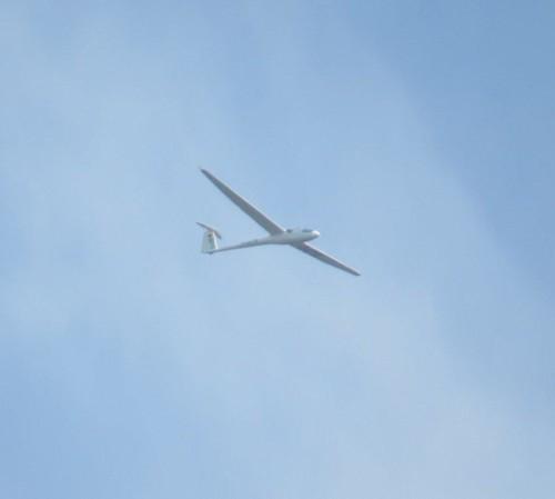 Glider - D-0670-01