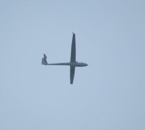 Glider - D-0670-02