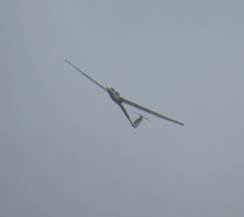 Glider - D-0670-03