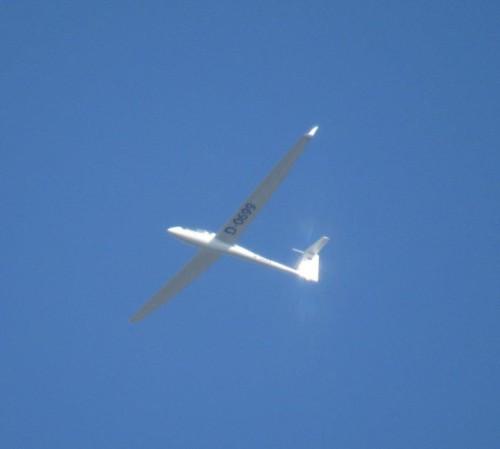 Glider - D-0699-01