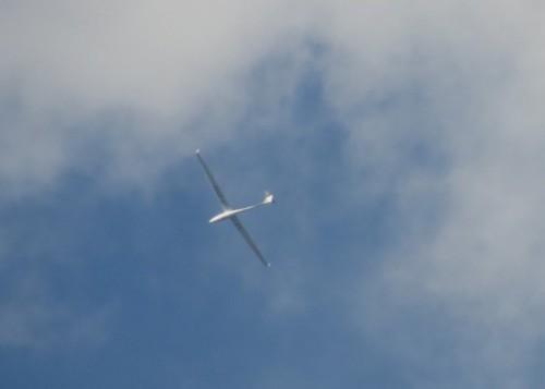 Glider - D-0787-01