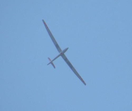 Glider - D-0816-03