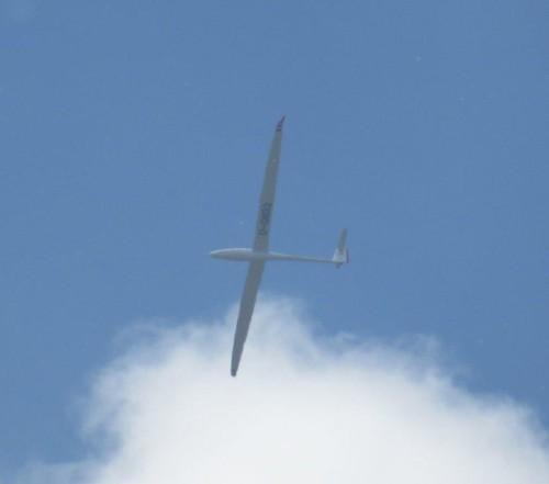 Glider - D-0832-01