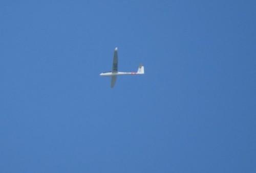 Glider - D-1003-01