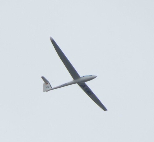 Glider - D-1003-02