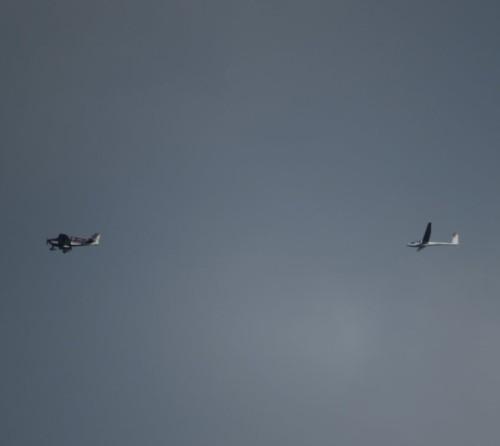 Glider - D-1072-02