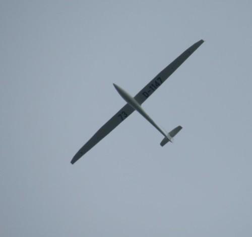 Glider - D-1147-01