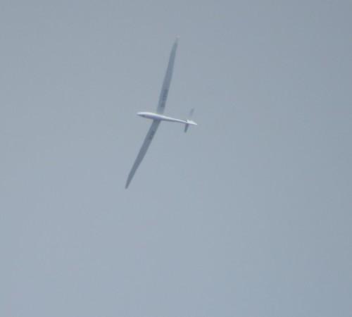 Glider - D-1208-01