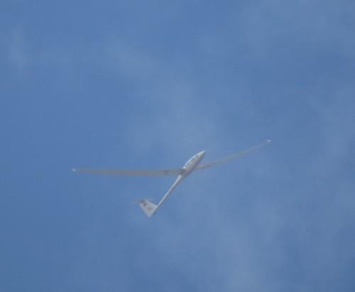 Glider - D-1257-01
