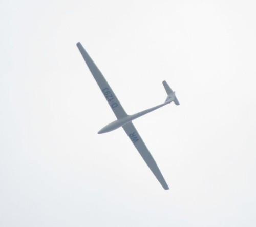 Glider - D-1293-01