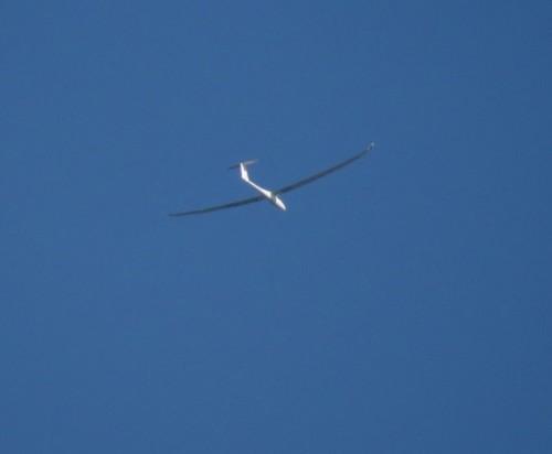 Glider - D-1430-01