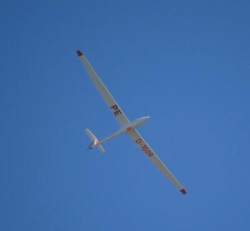 Glider - D-1509-04