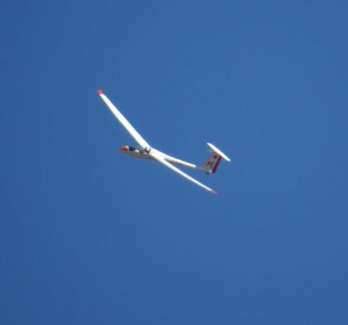 Glider - D-1509-05