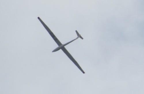 Glider - D-1612-01