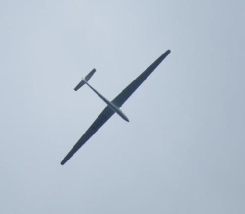 Glider - D-1706-01