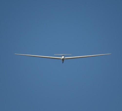 Glider - D-1721-13