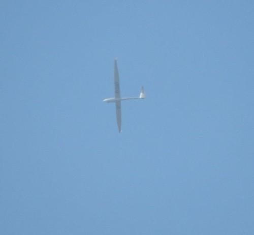 Glider - D-2167-01