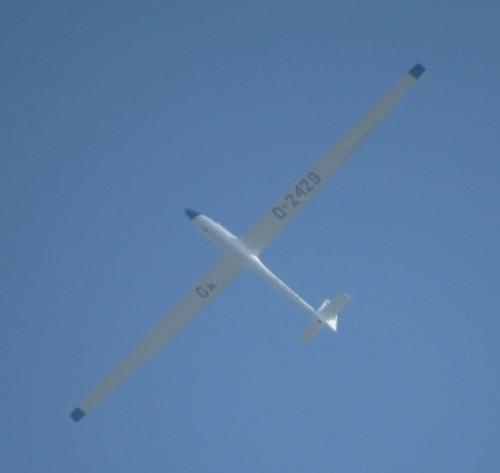 Glider - D-2429-01 (1)