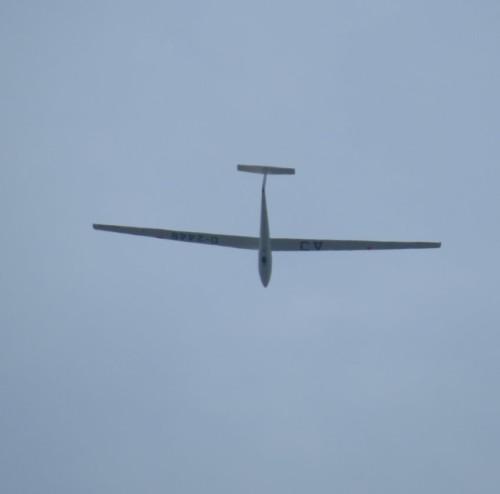 Glider - D-2448-02
