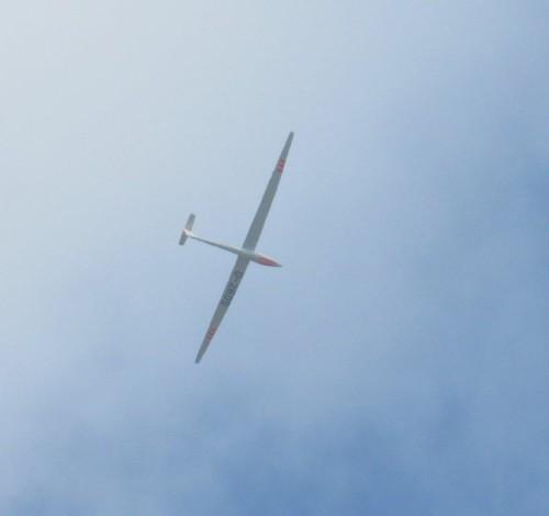 Glider - D-2605-02