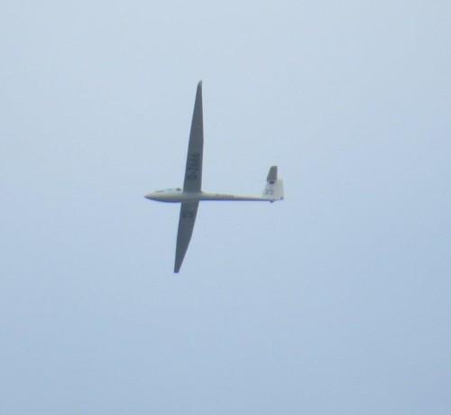 Glider - D-2666-02