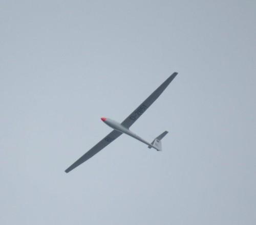 Glider - D-2851-01 (1)