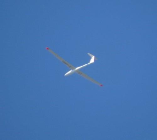 Glider - D-2865-03