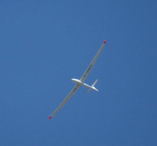 Glider - D-2865-04