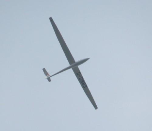 Glider - D-2883-01
