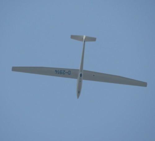Glider - D-2914-01