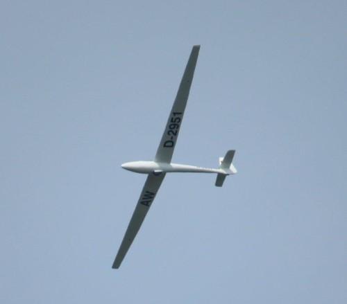 Glider - D-2951-04