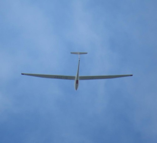 Glider - D-3127-02