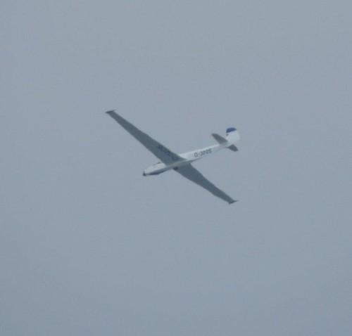 Glider - D-3205-02