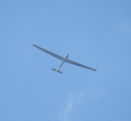 Glider - D-3257-01