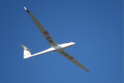 Glider - D-3331-01