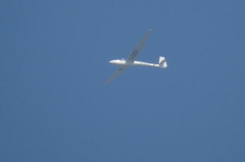 Glider - D-3337-01