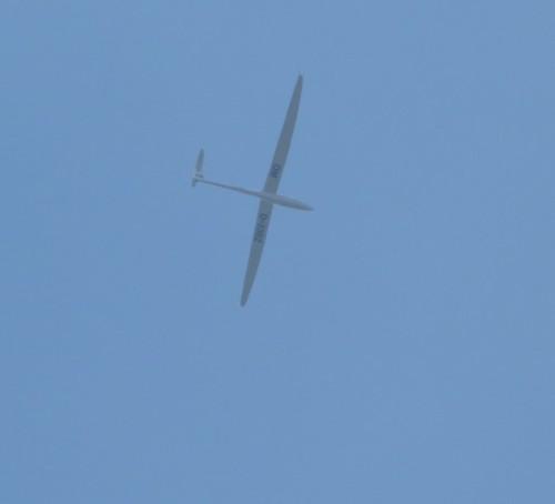 Glider - D-3362-01